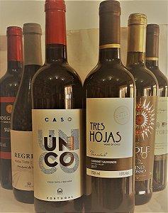 Kit de vinhos Tintos 6 unid. R$ 166,00 reais  - vários países - várias uvas