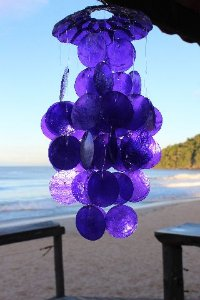 capiz chime (placuna placenta) purple 30 cm - unid