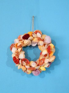 garland ring wreath cockles pecten cl 20 cm - unid