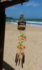 nito cage bi-color - unid