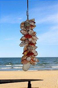 shell garland codakia 33 cm - unid