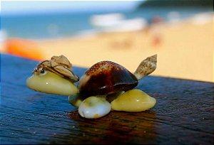 mini turtle 5 cm -  pc/10