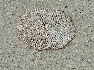 placemat solid 22 cm - unid