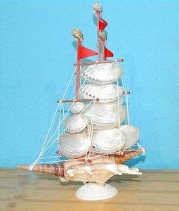 sail boat abalone 23 cm  - unid