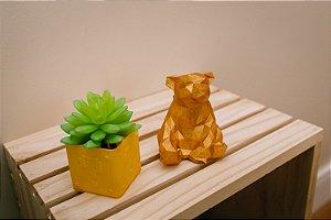 Urso Dourado