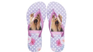 Chinelo Rafitthy Be Forever York Lilac Flowers