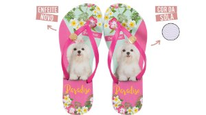 Chinelo Feminino Rafitthy Be Forever Maltês Paradise Colors 110.92701_17