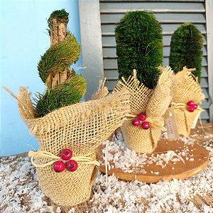 Mini Árvores de Natal Decorativas de Mesa Trio
