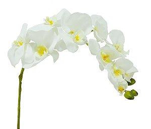 Haste de Orquídea Branca - 10cm X 95cm Premium