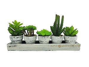 Kit Cactus Suculenta - 29,5cm