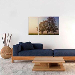Quadro Trio de Árvores Paisagem Neblina Natureza