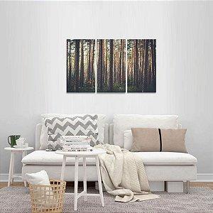 Quadro Árvores Floresta Natureza Conjunto 3 Peças