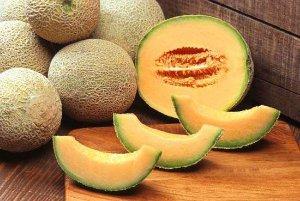Melão Cantaloupe Americano (Hibrido bazuca F1) - 20 sementes para cultivo