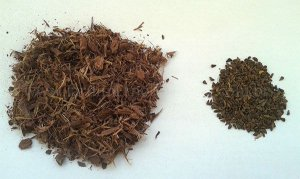 Anahuasca (Jurema + Arruda síria)