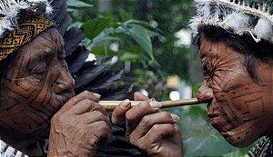 Rapé Sagrado Indígena (Yopo, Cálcio de ostras e Mapacho)