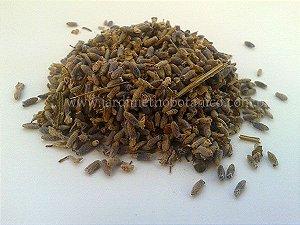 Alfazema/Lavanda EXTRA AZUL (Lavandula officinalis)