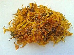 Calêndula (Calendula officinalis) - Flores