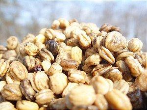 Ginseng coreano (Panax ginseng) - 50 sementes para cultivo