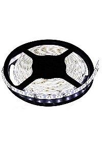 CdLi - Fita LED - 5050-W - Rolo 5M - Sem Silicone - Branco Frio