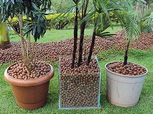 Argila Expandida  10 kg / 25 litros