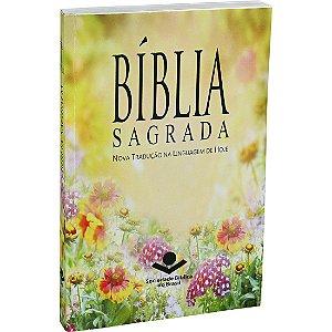 BÍBLIA SAGRADA NTLH - NOVA EDIÇÃO POPULAR