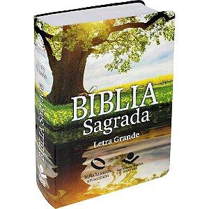Bíblia Sagrada Letra Grande - Nova Almeida Atualizada - com Índice - Reflexo