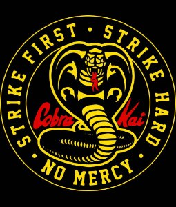 Camiseta cobra kai first infantil