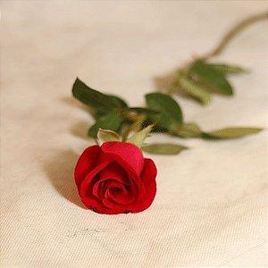 Rosa vermelha Unidade