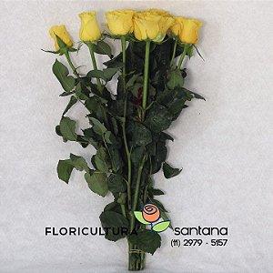 Rosas Amarelas Atacado 12 hastes