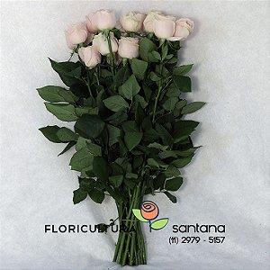 Rosas rosa clara Atacado 20 hastes