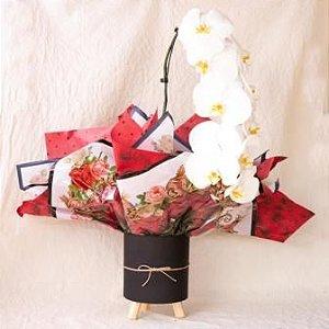 Orquídea Branca para Presentear