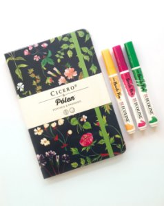 Kit Bujo 3: Cicero & Pólen Floral Desireé Paginado + Trio de canetas Ecoline Brush Pen