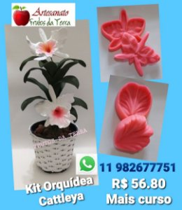 Kit Orquídea Catleya