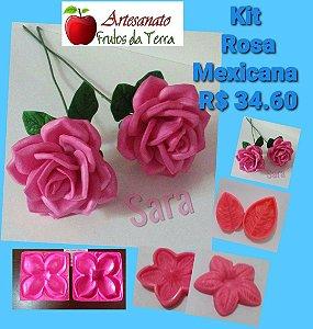 Kit frisadores Rosa Mexicana