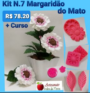 Kit N.7 Margaridão do Mato