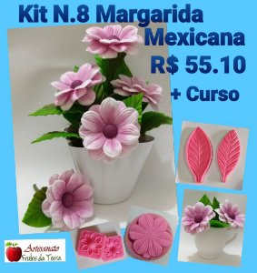 KIT M.08 MARGARIDA MEXICANA