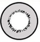 LENTE DE CONTATO CINZA DONUT - gray circle lens