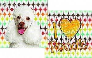 Almofada de raças - Poodle