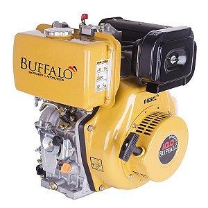 Motor Gasolina BFD 10HP