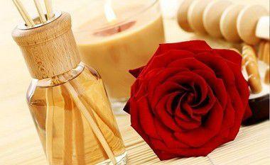 Aromatizador de Ambiente Perfume o dia todo