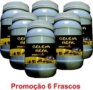 PROMOÇÃO 6 Geleia Real In Natura 1Kg