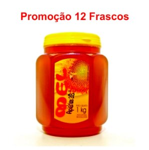 PROMOÇÃO 12 Mel Silvestre POTE 1 Kg