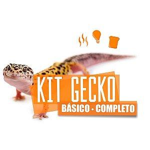 Kit Completo Para Leopard Gecko Com Brinde