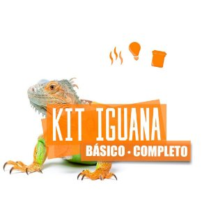 Kit Completo Para Iguana Com Brinde
