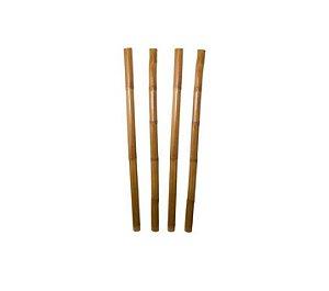 Bambu Para Decoração de Terrários Arborícolas