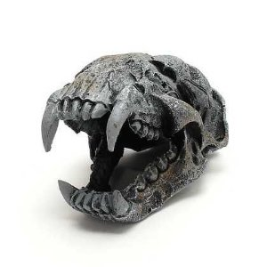 Toca e Esconderijo Para Répteis Esqueleto Cabeça de Puma