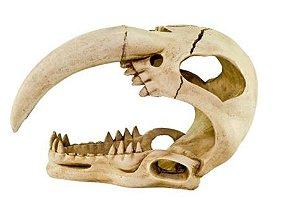 Enfeite de Resina Dente de Sabre Para Repteis e Anfibrios