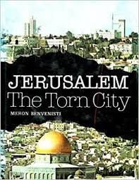 Jerusalem the Torn City - Meron Benvenisti