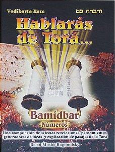 Hablarás de Torá: Bamidbar (Números) v. 4
