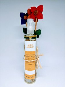 Aroma Ambiente em Flor Laranja e Vanilla